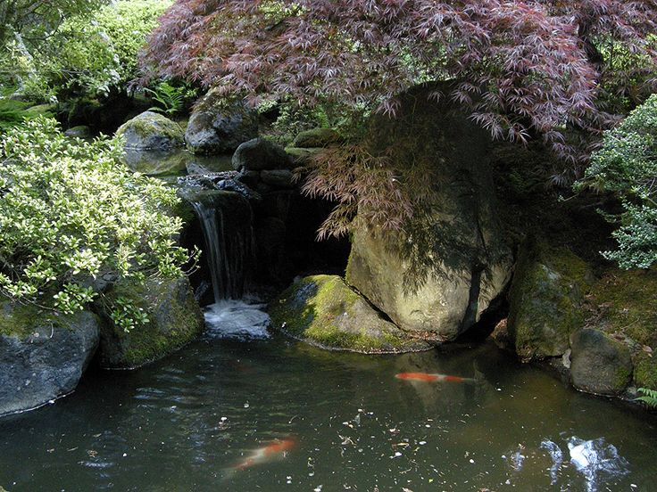 Portland japanese garden pond with koi garden pinterest for Japanese pond garden