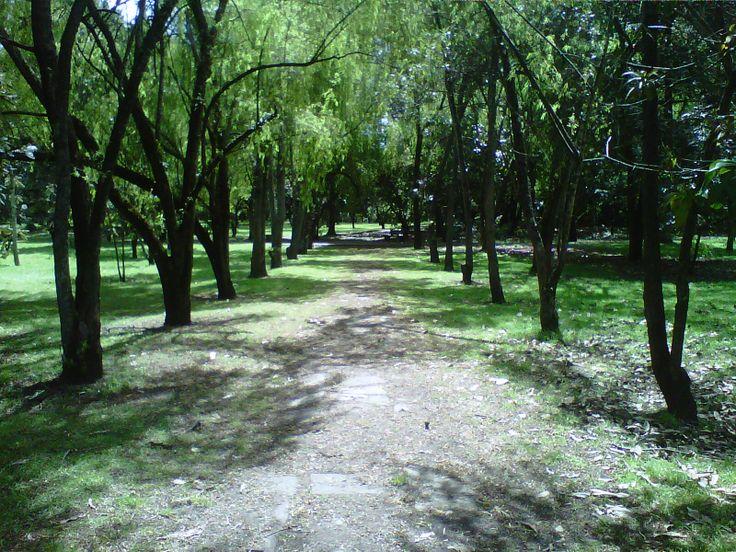 Jardin botanico bogota new style for 2016 2017 for Jardin botanico bogota nocturno 2016