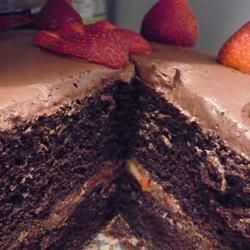 """Too Much Chocolate Cake"""" 