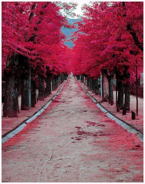 I wanna walk through there// Me too