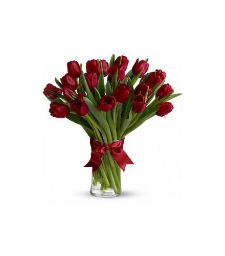 Download image radiantly red tulips pc android iphone and ipad