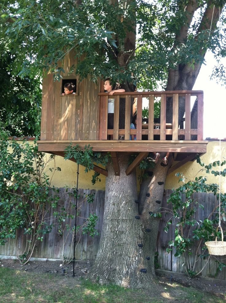 Use Rock Climbing Grips Tree House Fort Ideas Pinterest