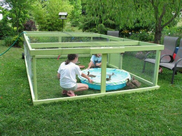Duck pen yard garden pinterest for Duck hutch ideas