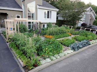Beautiful Edible Front Yard Permaculture And Edible 400 x 300