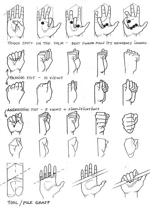 puntos de contacto de la palma de la mano