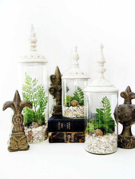 Cottage Chic Terrarium Set Woodland Whites by DoodleBirdie on Etsy, $150.00