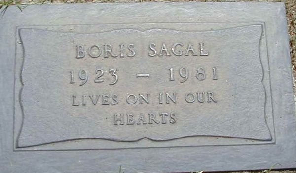 Boris sagal accident