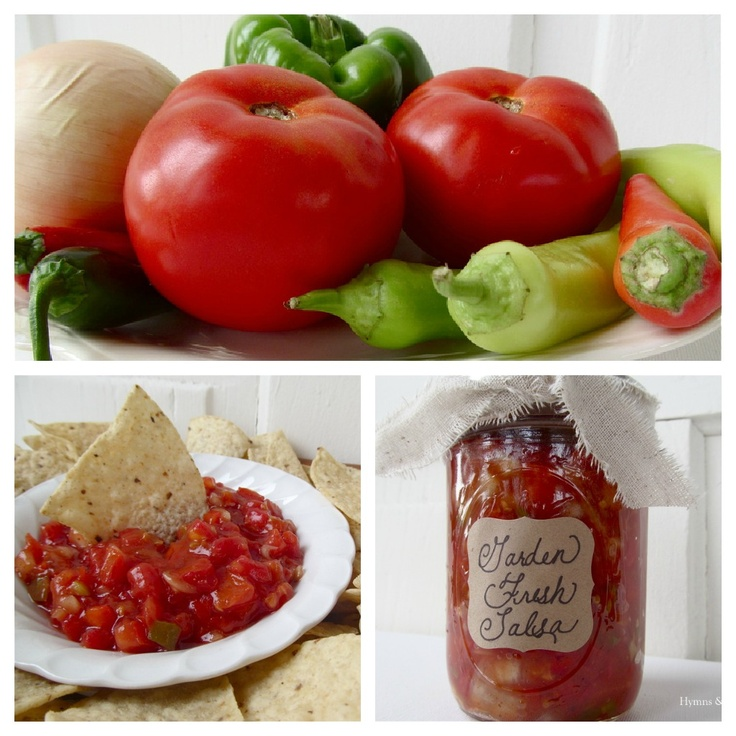 Garden Fresh Salsa Recipes — Dishmaps