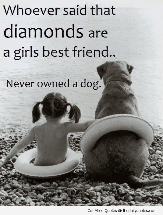 Dog Devotion Quotes. QuotesGram