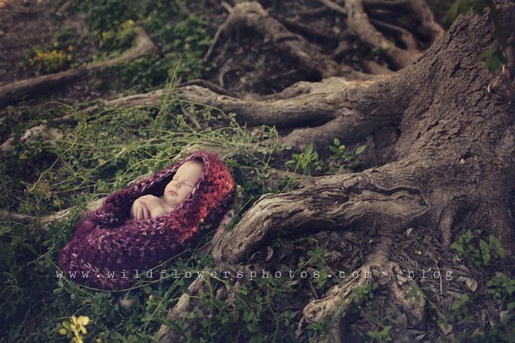 image et nature revue 9A