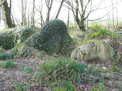 Los jardines perdidos de Heligan Inglaterra .