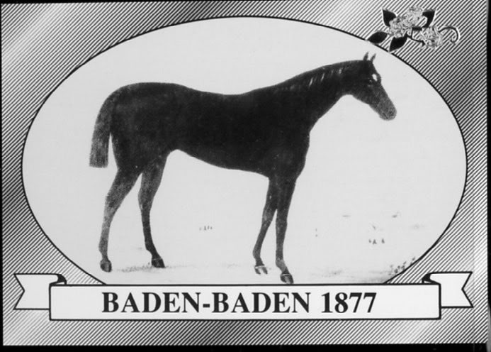 Baden-Baden- 1877 Kentucky Derby Winner