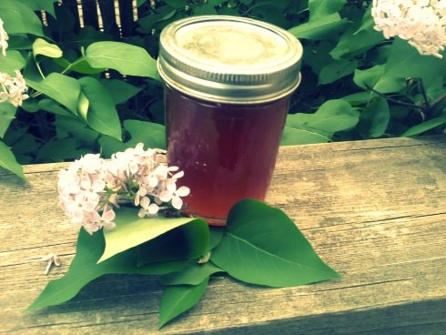 Lilac simple syrup | Gluten Free | Pinterest