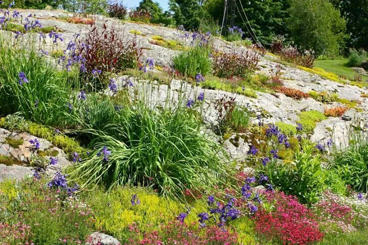 Rock Garden Beautiful Gardens Pinterest