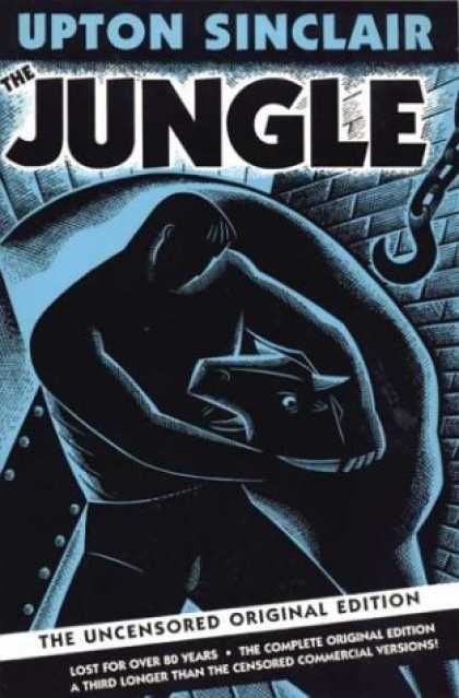 the evils of capitalism in upton sinclairs the jungle Essay on the jungle upton sinclair  the gap between owners of business and employees was the distinct feature of capitalism and this gap could be easily traced .
