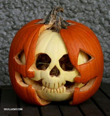 Pumpkin Anatomy Skull Follow-Up | Halloween | Pinterest