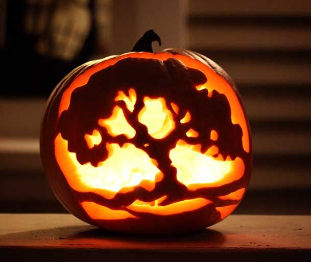 Pin by allie coad on pumpkin carving ideas pinterest