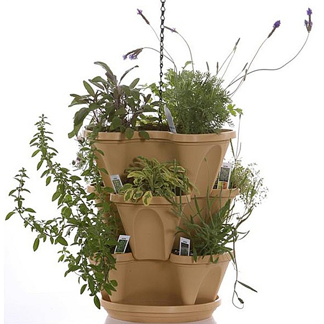 Indoor Herbal Tea Herb Garden Starter Kit Self Watering