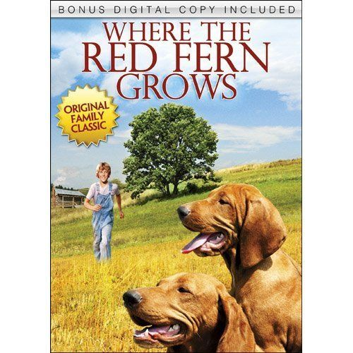 Where the red fern grows summary