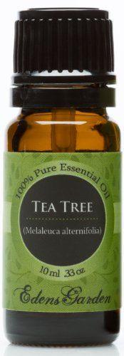 Tea tree melaleuca 100 pure therapeutic grade essential oil 10 ml