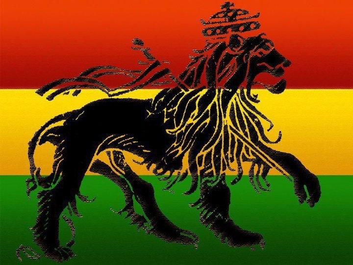 Conquering Lion of the Tribe of Judah | RastafarI | Pinterest Conquering Lion Of Judah