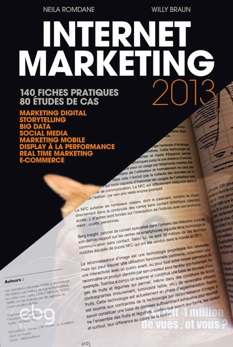 Internet marketing 140 fiches pratiques 80 ?tudes de cas