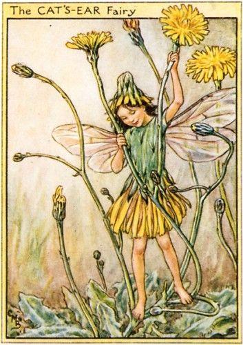 シシリー・メアリー・バーカーの画像 p1_33