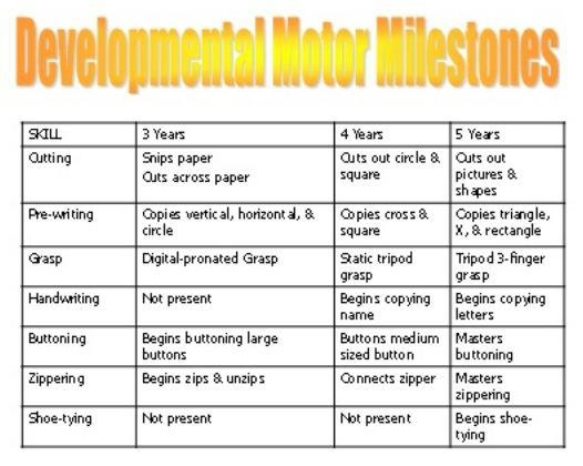 Development Milestones For Motor Skills Preschool Gross