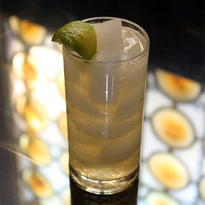 Moscow Mule -- Ginger beer, vodka, lime (or lemon) and apple bitters ...