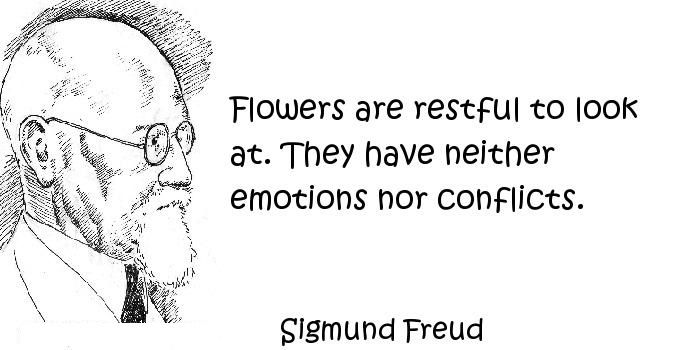 Funny Quotes about Flowers Funny Quotes Pinterest