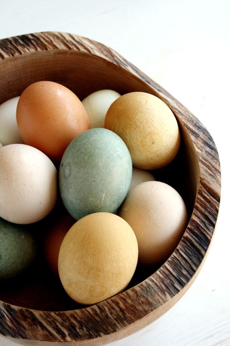 Shoyu Tamago....aka Soy Sauce Eggs | Eggs | Pinterest