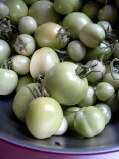 Green Tomato Chutney and other green tomato ideas