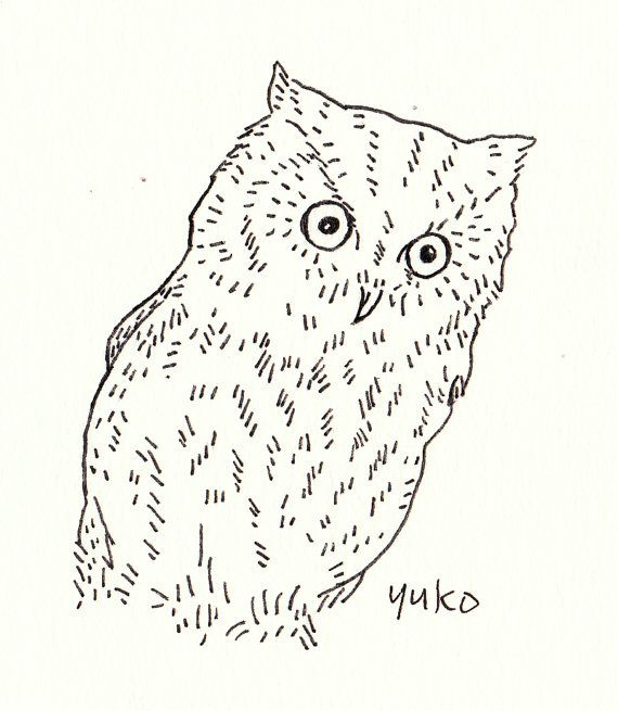 Line Art Etsy : Western screech owl line drawing print