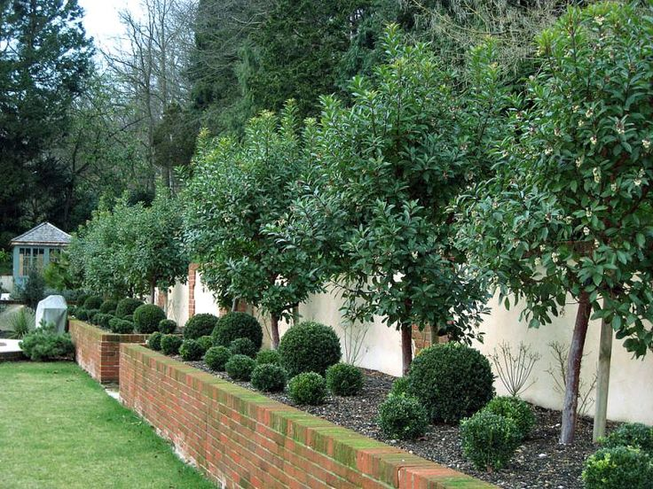 Pin by lauren on gardens pinterest for Low maintenance flower bed