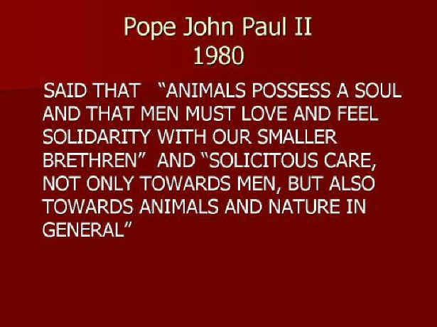 God Knows...Animals Matter - God's Creatures Ministry -