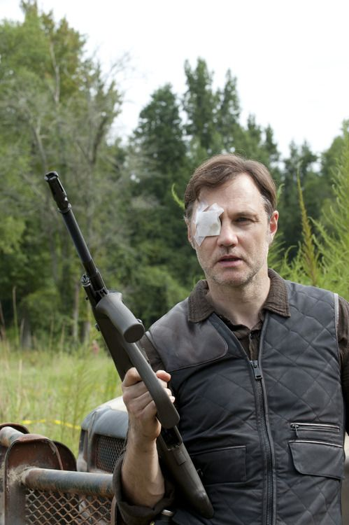 David Morrissey as The Governor, The ...