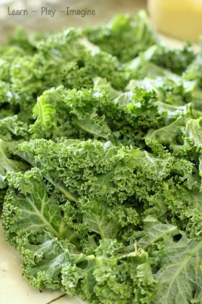 Kale chips can be used as part of unit study on leaves kale leaves