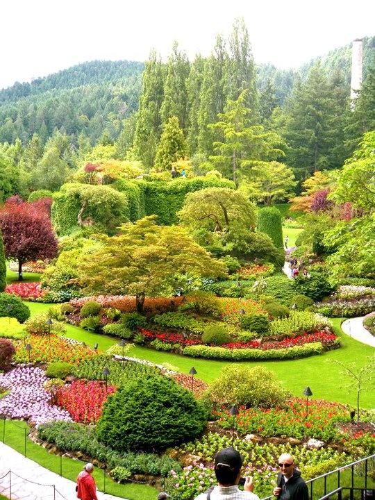 The Butchart Gardens Gardening Pinterest