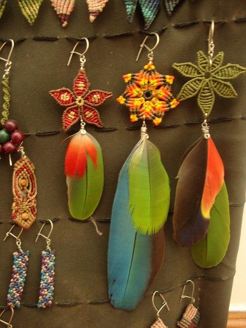 plumas de loros y papagayo