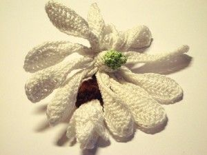 Free Crochet Magnolia Flower Pattern : Magnolia Flower ~ free pattern CROCHET.flowers Pinterest