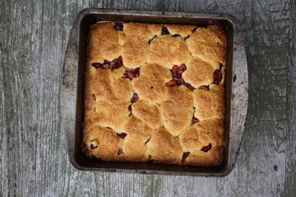 Cherry Cornmeal Cake   Nom nom nom   Pinterest