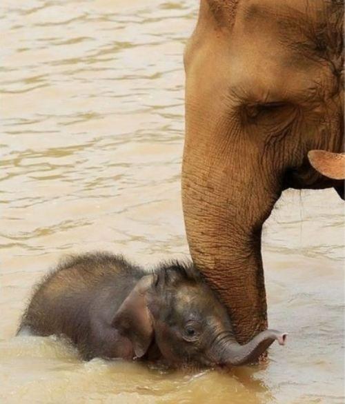 so adorable<3