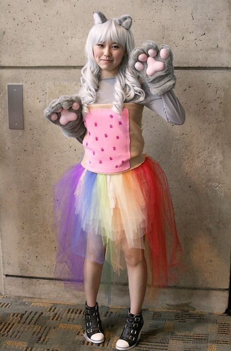 nyan cat halloween costume for cats