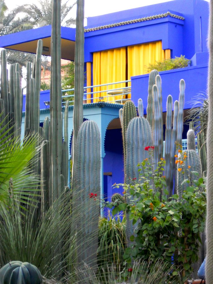 Jardin Majorelle Marrakech Once In Maroc Pinterest