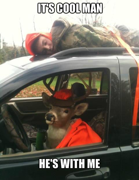 Deer Hunting Meme | Slapcaption.com