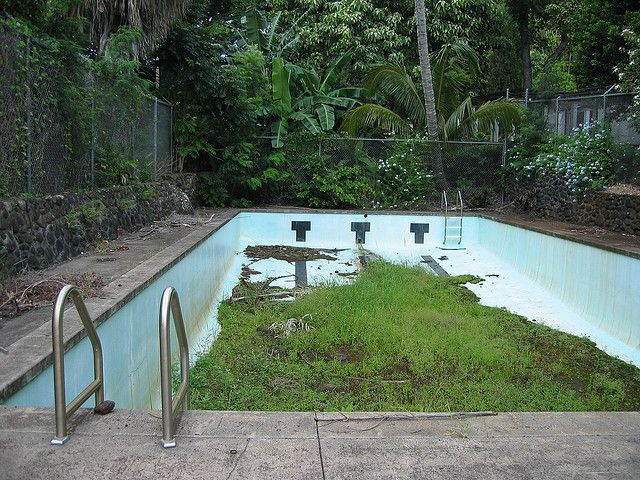 Abandoned pool my style pinterest for Unused swimming pool