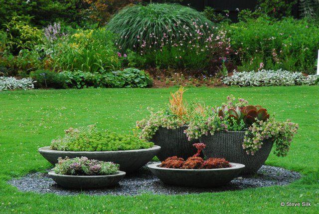 garden ideas to hide septic tank