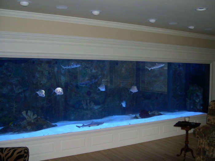 Fish Tank Wall New Home Furnishings Pinterest