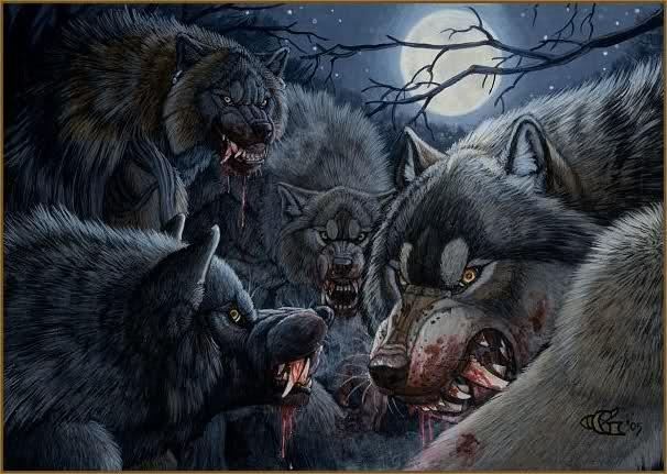... Diana Salinas-Sandoval on Werewolves,Skinwalkers, & Lycans   Pinterest