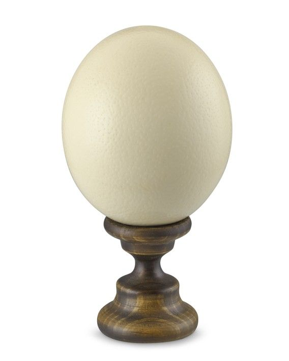 Light Stand For Egg: Ostrich Egg On Stand